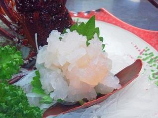 【地物伊勢海老をお刺身とボイルで食べてみて!】朝食は伊勢海老の頭で味噌汁を♪