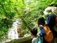【朝食無料!】今からの季節にぴったり、栗駒山のハイキングプラン!!
