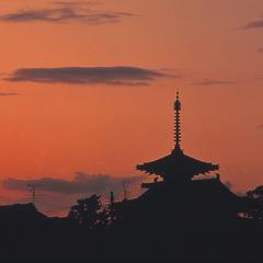 【古都奈良をめぐる】JR天王寺〜JR奈良の往復切符つき