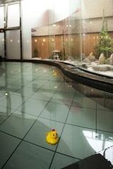 【朝食バイキング付き】☆広い和室で、わいわいプラン!☆ 和洋室「G302」