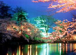 【送迎付き】高田公園夜桜見学1泊2食付プラン