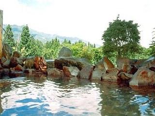 【秋得!アパ オータムイルミネーション!】妙高山の紅葉&高原deゆったり温泉を楽しもう!<B&B>