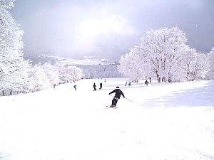 【冬得!スキー&スノボ早期予約割引!】お料理グレードアップUP★大人気の自家製ローストビーフディナ!