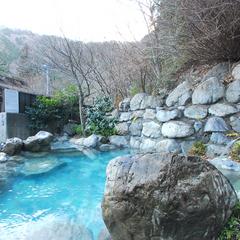 【スタンダードプラン】季節の山菜・川魚料理と美人の湯を満喫♪1泊2食付