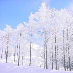 1泊2食付きプラン★お食事は夕朝・人気のバイキング!