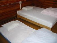 食事無し 【小学生以下添い寝無料】【禁煙】 1人目はベッド、2人目からベッド横に布団