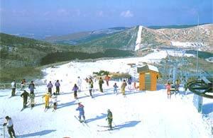 すべっ得♪九重森林公園スキー場へGO★カップルおすすめ★この冬イチオシプラン♪