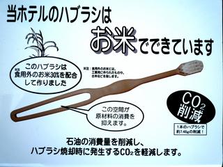 ノーカープラン(車の利用のない方限定)【ECO】