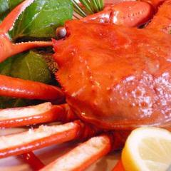 ◆夏でも蟹を食べたい方に!◆境港水揚げ紅ズワイガニと鳥取和牛のスタンダードプラン
