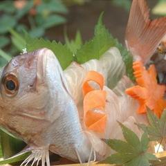 【2食付】 海鮮舟盛りプラン 鯛または伊勢海老選択 〜お部屋食確約〜 【天然温泉有】◎