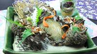 特選☆こりこりアワビ、キトキト地魚姿造りを楽しむプラン【松-matsu-コース】