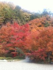 秋季限定♪お得に体感プラン