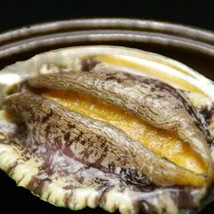 【アワビ陶板焼き付き】人気です★海の幸満喫コース♪(現金特価)
