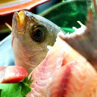 期間限定!ポイント10%◆スタンダード旬の海鮮料理プラン 楽天限定
