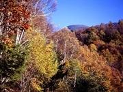 秋の行楽〜ハイキング、登山、紅葉狩り〜夕食は特製フルコースを満喫♪