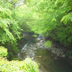 【2食付基本】滝を望む渓流沿いのかけ流し露天風呂&名物・猪豚料理を満喫♪