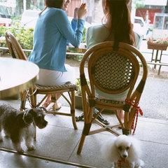 【女子旅】ワンちゃん×ガールズトーク♪〜愛犬家の女子会プラン〜【選べる特典付】