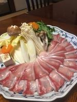 【お料理プラン】旬の味覚を愉しむ小田原漁港水揚げ厳選寒鰤しゃぶしゃぶ鍋