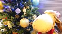 【秋冬旅セール】【朝食付】【好アクセス!JR・地下鉄5路線】ビジネス!Web限定