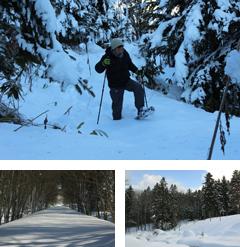 冬の「ノンノの森」をハイキング スノーシューで雪上トレッキング