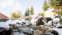 【1泊2食付】スタンダード◇「癒しの森の温泉くつろぎプラン」〜ホワイトシーズン〜