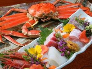黄タグ付き「越前蟹フルコース」【1キロ以上保証!】