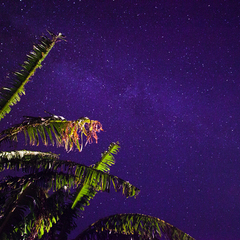 【離れ】で自由に竹富ステイ!絶景の星空をひとりじめ♪<素泊まり>