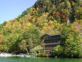 【紅葉】黄葉の上高地! 秋の大正池プラン