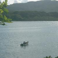 【お得な連泊2食付】 西表島へようこそ♪ 沖縄料理でおもてなし <和室4.5畳(トイレ・フロ共同)>