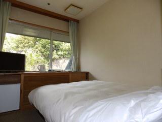 ■【ひとり旅・出張に!】一泊二食付バイキング格安プラン(山側洋室風呂無)