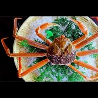 【吟味大蟹】タグ付き活間人蟹1.0杯カニフルコース<極み少量>