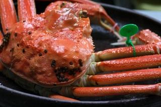 【冬得】【早期得割】最高級ブランド間人蟹のフルコース