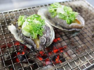 【早期得割】経ヶ岬沖産松葉蟹茹でがにと選べる炭火焼、鍋料理が嬉しい丹後冬会席コース