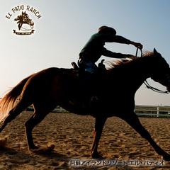 【ホーストレッキングステイプラン】★ロッキーマウンテンスペシャル♪_.:*~ 【乗馬60分コース】