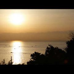 阿万海岸★【期間限定】海の宝石・海ホタルを生で見ちゃお♪海ホタル観賞プラン〔1泊2食〕