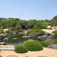 【観光チケット★足立美術館入館入場券付プラン】四季折々の日本庭園がご覧いただけます