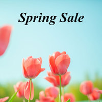 Spring Sale (素泊まり)