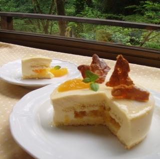 【伊豆牛ハンバーグ・お造りプラン】デザートはホールケーキ!記念日にも◎ 貸切り温泉でのんびり