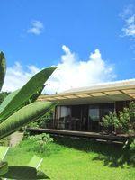 沖縄北部を楽しむ、上質な大人女子ひとり旅プラン