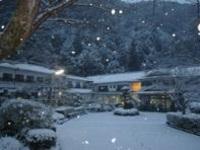 【1月3日限定】優雅に過ごすお正月は温泉で湯ったりと。【お正月会席】