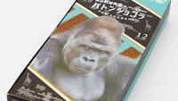 【知多半島弁当】東山動植物園GO!GO!入場券など嬉しい4大特典付