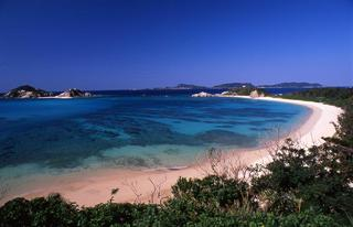 慶良間諸島 渡嘉敷島でファンダイビングプラン
