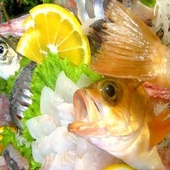 チョイスで嬉しい一品♪気愛造り&ふかふか煮魚に心ときめき♪美人の湯で、ぽかぽかすべすべお肌に【冬得】