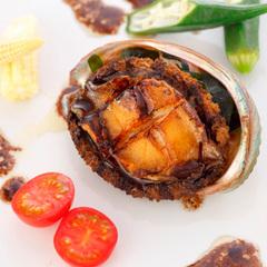 【春の豪華食材】丹後の海の幸+但馬牛+鮑の3大美味★ヴェントコース[ZS006LJ]