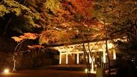 【観光タクシーで巡る】6時間コース♪ 〜琵琶湖・湖東三山・信楽〜フリープランも (朝食付)