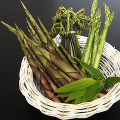 【春の味覚】春の息吹を感じる♪旬の『山菜』×のんびり『湯めぐり』[1泊2食付]