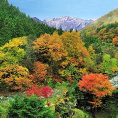 【2大特典付】谷川岳望むジャグジー付貸切風呂40分無料&アウト11時!四季彩会席
