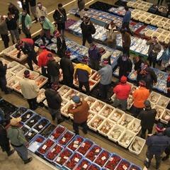 【特定日宿泊限定☆】沼津魚市場セリ見学ツアー&約40種類の朝食バイキング♪