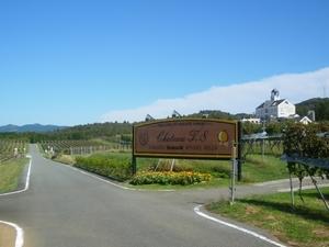 富士山ビューとブドウ畑、里山ウォーキング!さわやか秋のカニプラン