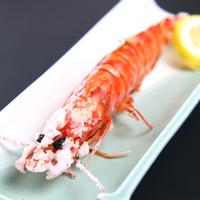 グレードアップ◆ 豪華食材で贅沢に★アワビ&旬魚姿造り付き!旬の海を味わう♪GO東海